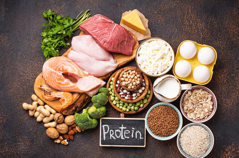 High Protein Low Calorie Foods for Weight loss